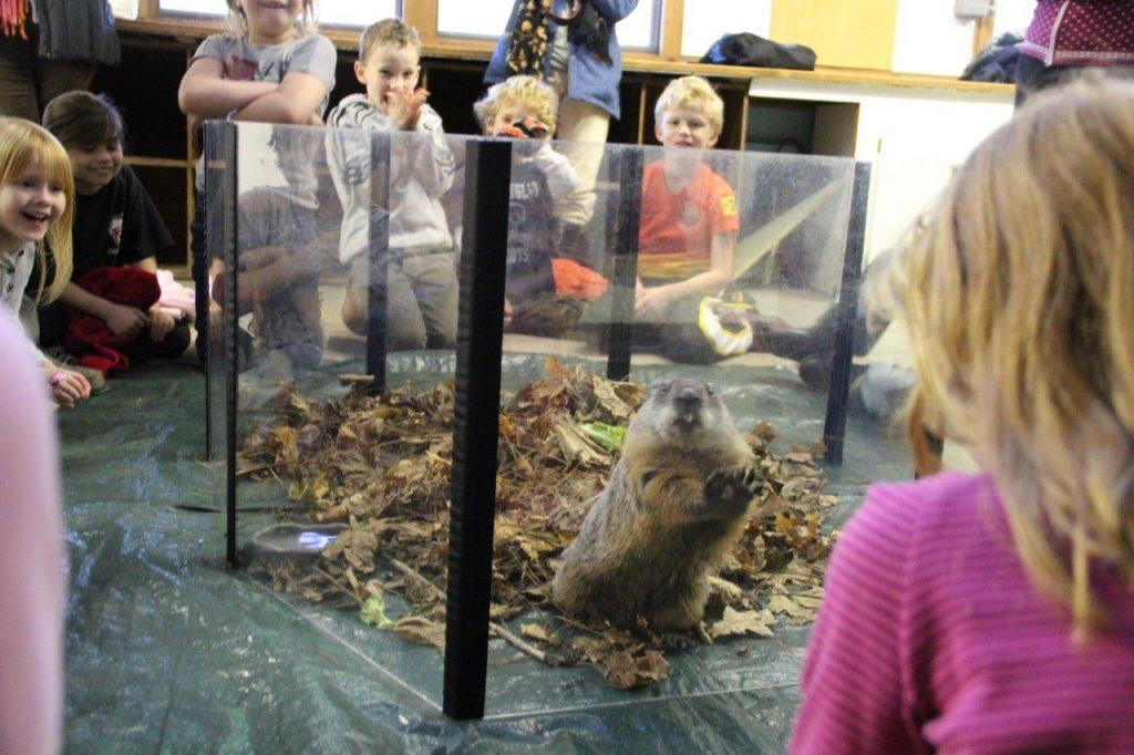 Kindergarten Students Meet Ms. G